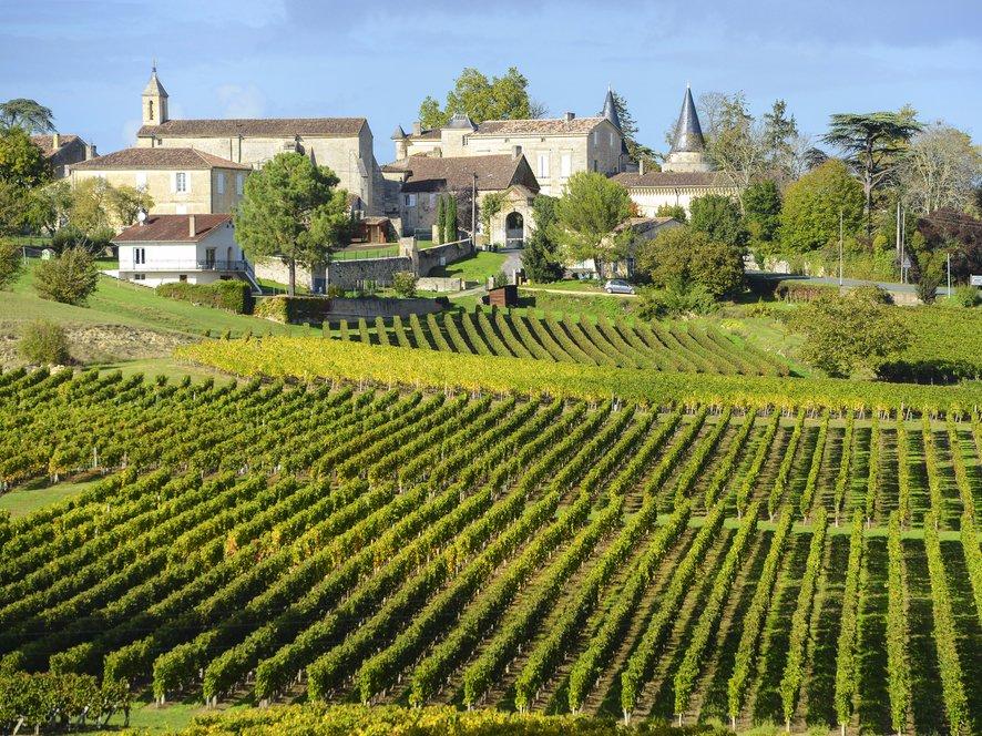 Go wine tasting in Bordeaux.