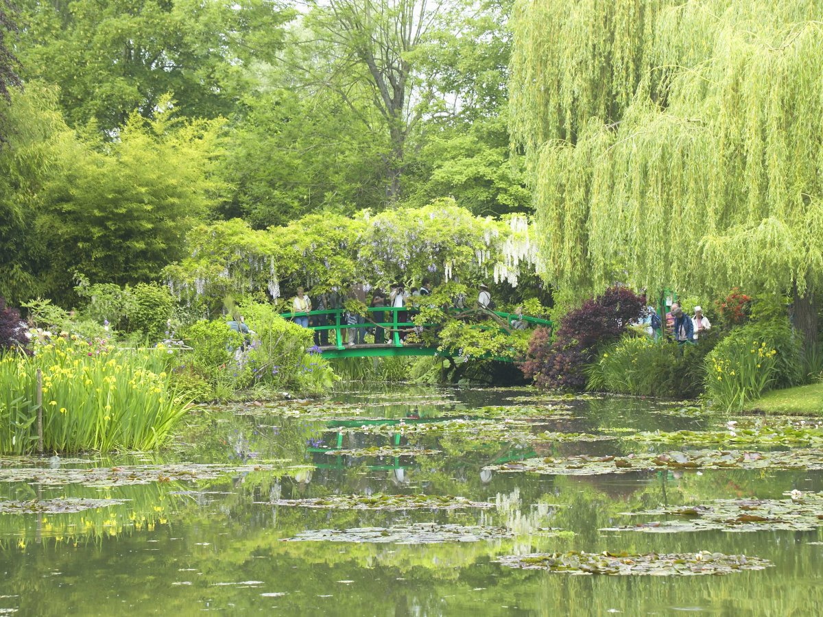 See the waterlilies that inspired Claude Monet at his home in Giverny.