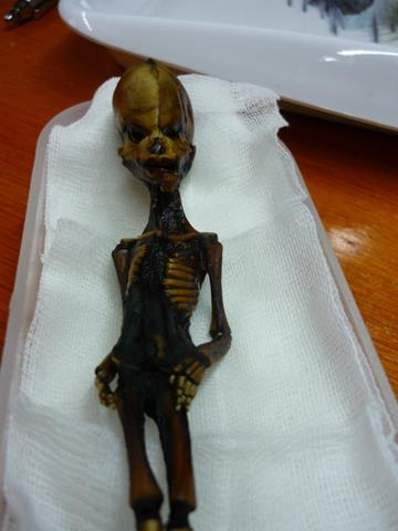 Người ngoài hành tinh tồn tại? Xác ướp bí ẩn trên sa mạc atacama ở Chile